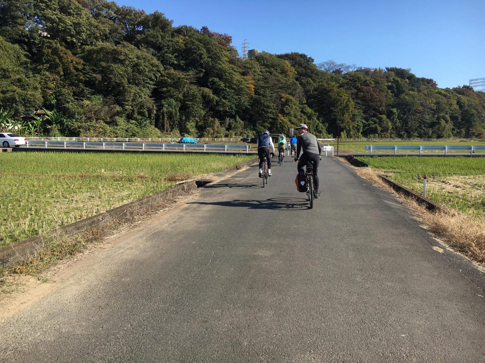 2020年11月 三川公園-泉の森 若07