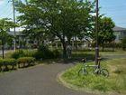 2013年6月クラブラン 道保川公園ポタリング 3