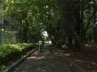 2013年6月クラブラン 道保川公園ポタリング 6