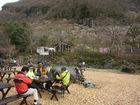 2014年3月クラブラン 湯河原梅林 真鶴岬  01