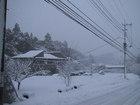 2001年1月27日の雪