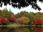 2016年11月クラブラン 昭和記念公園 02