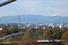 2016年11月クラブラン 昭和記念公園K 02