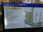 2016年11月クラブラン 昭和記念公園K 03