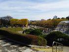 2016年11月クラブラン 昭和記念公園K 04
