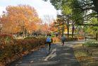 2016年11月クラブラン 昭和記念公園K 06