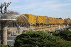 2016年11月クラブラン 昭和記念公園K 08