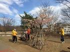 2017年3月クラブラン本沢梅園 8