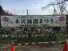 2018城山湖 本沢梅園 11