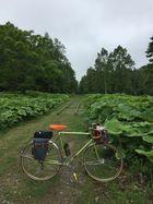 2019年春 北海道サイクリング4 02