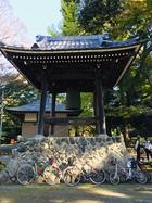 2020年11月 三川公園-泉の森 01