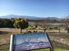 2020年11月 三川公園-泉の森 若10
